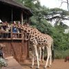 Nairobi Attractions